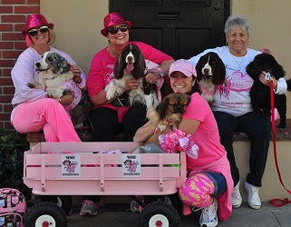 Breast Cancer Walk: Team Wag For Awareness